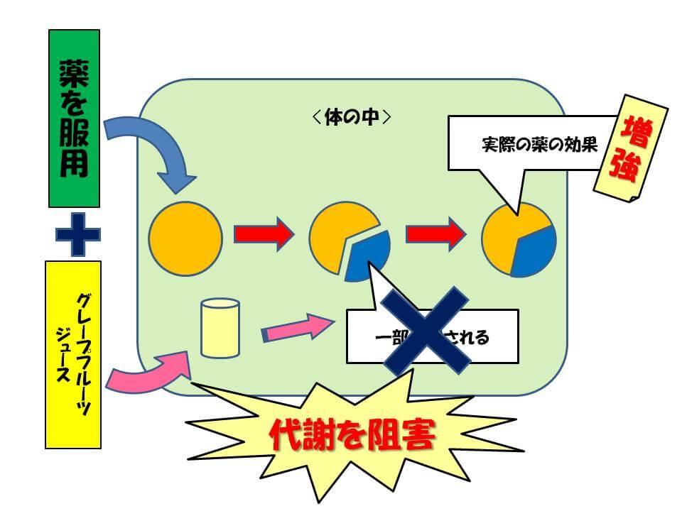 薬の相互作用(図2)