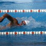 swimmer-563860_960_720