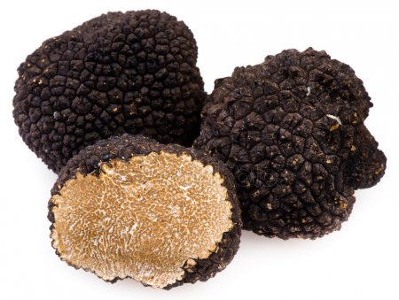 depositphotos_6412840-stock-photo-black-truffles