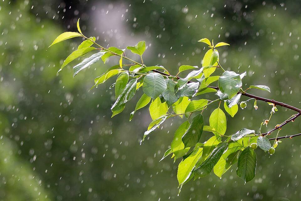 rain-3411970_960_720