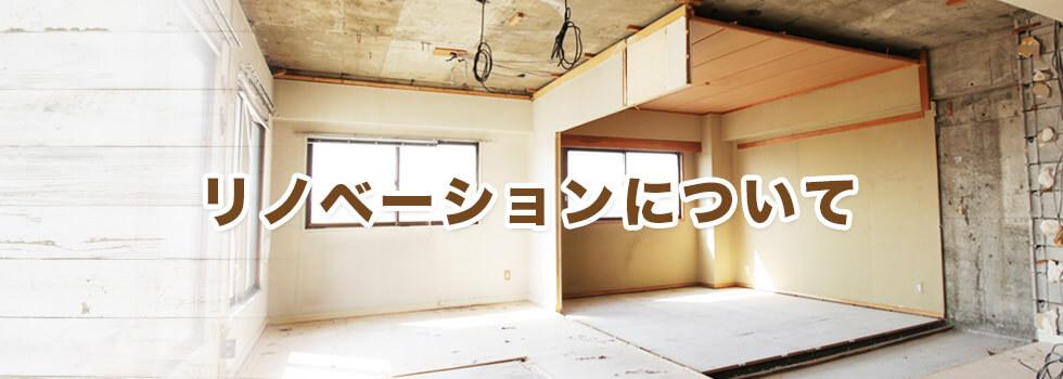 renovationMain